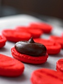 Chocolate cream on a raspberry macaroon