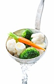 Blanched soup vegetables in a ladle