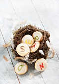Biscuits in an Easter nest