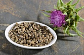 Milk thistle (a flower and seeds)