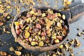 Dried saw palmetto fruits (Sabal serrulata) on a wooden spoon