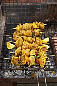 Lamb skewers with curry on the barbecue