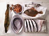 Verschiedene Fische und Nordseekrabben