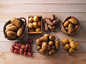 Various potato varieties