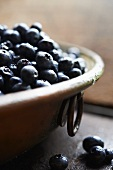Fresh Blueberries in a Copper Bowl
