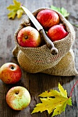 Apples in a jute sack with a knife