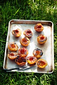 Pan of Grilled Peach Halves on the Grass