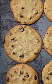 Chocolate Chip Cookies on a Baking Sheet; From Above