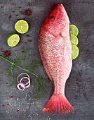 Raw Red Snapper Stuffed with Lime Surrounded by Seasonings