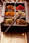 Various spices in a seedling tray with wooden spoons
