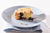 Blueberry cake with crumble topping