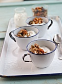 Cups of Greek Yogurt with Granola on a Tray