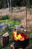 Rost mit Grillgut über loderndem Feuertopf auf einer Waldlichtung, daneben Blecheimer mit Brennholz