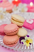 Vanilla, strawberry and raspberry macaroons on a glass plate with a pansy