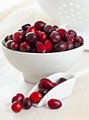 Cranberries in a white bowl and in a shovel