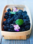 Blackberries with flowers in a punnet