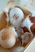 Hen's eggs with feathers in a small basket