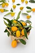 Fresh kumquats in a small basket