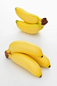 Baby bananas against a white background