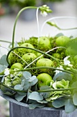 Flower arrangement with green apples, eucalyptus, moss and star of Bethlehem
