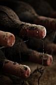 Antike staubige Weinflaschen lagern im Keller