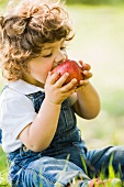 A small boy eating a large apple