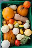 An assortment of squash in a crate at the market