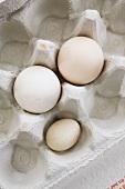 Three eggs in an egg box