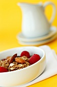 Bowl of Granola with Almonds and Raspberries