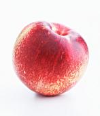 A nectarine
