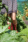 Woman wearing wellingtons standing on allotment