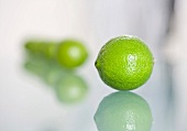 Limes in a line