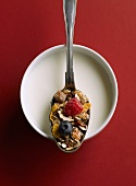 Cereals with berries on a spoon above a bowl of milk