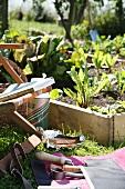 Gartenutensilien und Gartenstuhl neben Gemüsebeet mit Holzeinfassung