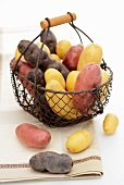 Assorted varieties of potato in a wire basket