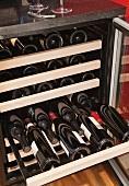 Wine bottles in wine cooler