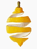 Studio Shot of lemon peel