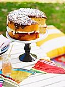Lamington cake for a picnic for Australia Day