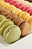 Bunte Macarons in Reihen