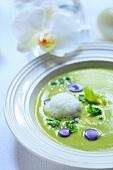 Broccoli cream soup with truffle potato ravioli