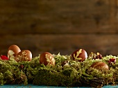 Dyed Easter eggs in natural colors on a moss covered surface