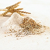 Grains of wheat, ears of wheat and wheat flour