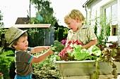 Germany, Bavaria, Boys holding broccoli