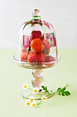 Strawberries in glass bowl, close up