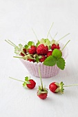 Paper cup of wild strawberries, close up