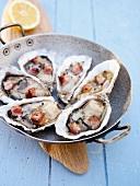 Austern mit gebratenen Speckwürfeln