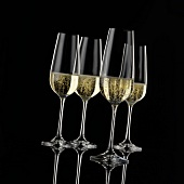 Four champagne glasses in front of a black background