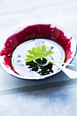 Black currant jam with a fragrant geranium leaf in a dish