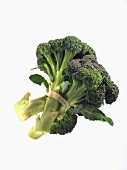 Organic Broccoli Bunch on a White Background