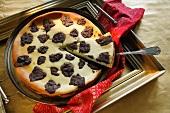Russian cheesecake with chocolate crust